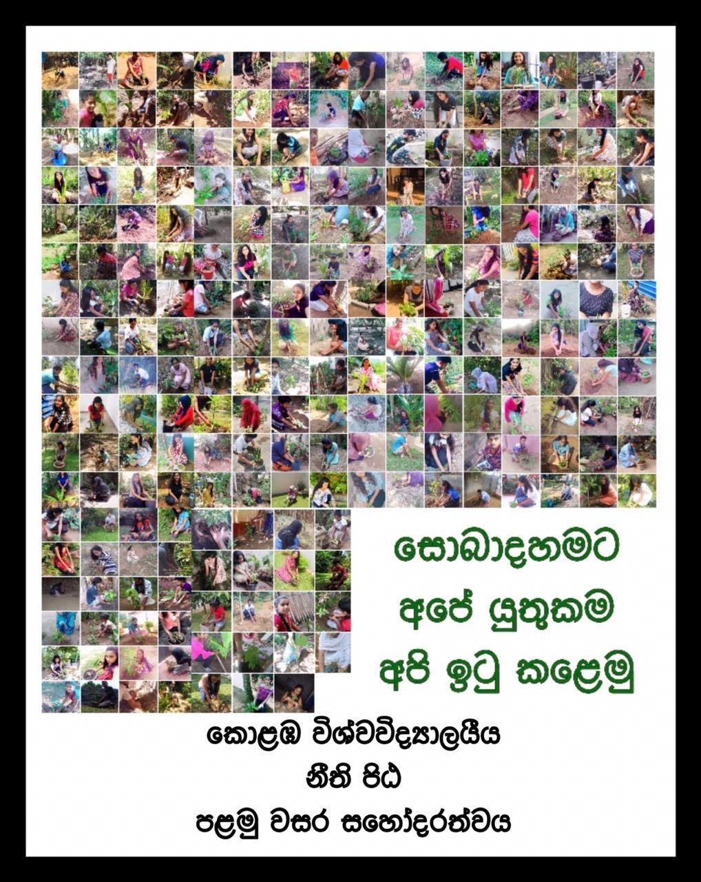 Tree Planting Project – 2020